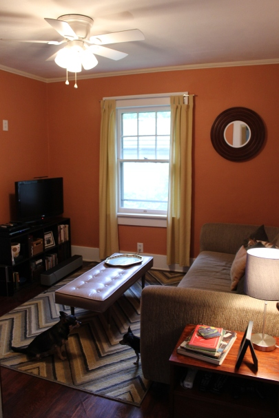 Mid point in the redo. Salmon walls and chevron rug.